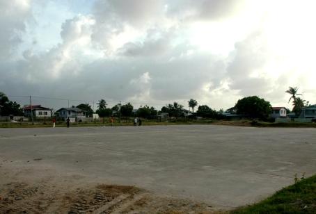 Rice Factory New Tarmac